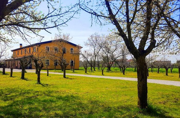 Borgo Borromeo